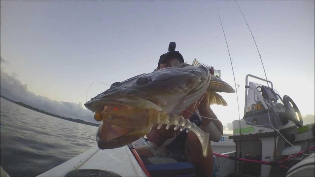 Big Flathead on St. Georges Basin - YouTube - photo#34
