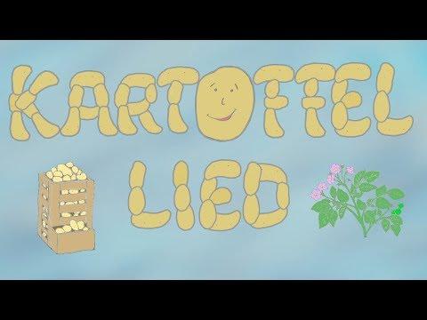 Kartoffel Lied