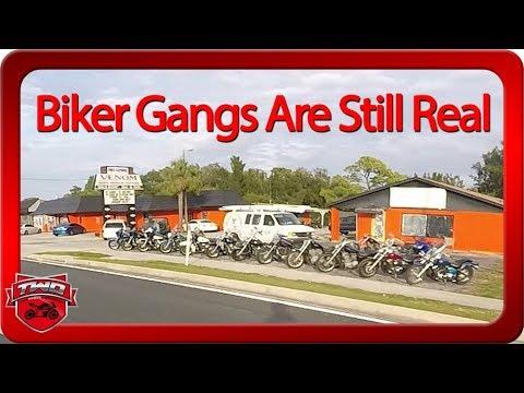 Biker Gangs Are Still Real