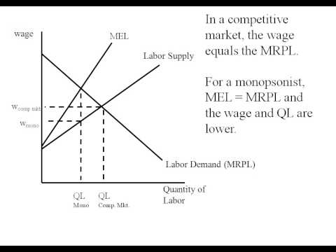 Econ - Monopsony Deadweight Loss