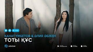 Канат Умбетов & Алия Абикен  - Тоты құс (аудио)