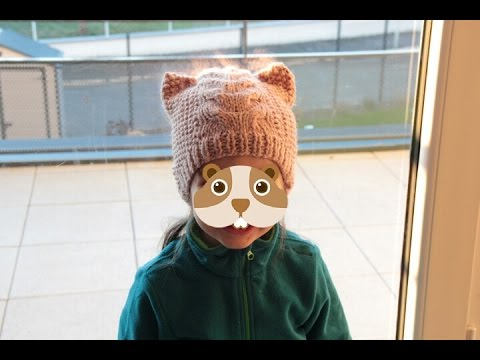 Tricot facile  bonnet chat - YouTube 59f6a6fb508
