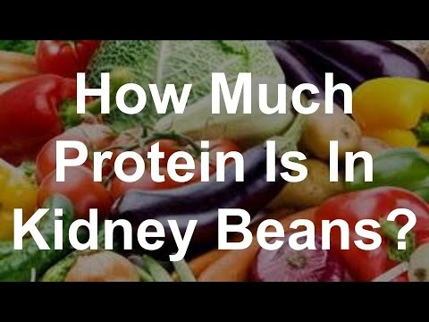 How Much Protein Is In Kidney Beans?