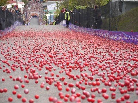 2014 Cadbury Jaffa Race
