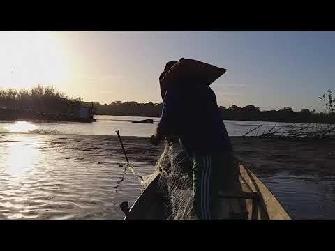 Pescaria  Caracaraí  5