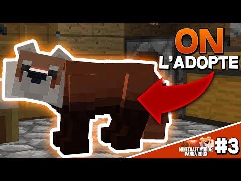 ON ADOPTE UN PANDA ROUX ?! + CRÉATION DE LA MAISON ! | Minecraft Moddé  Panda Roux - Épisode 3
