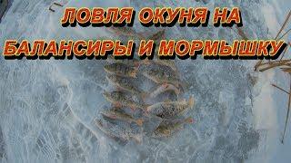 Окунь зимой Ловля на балансир Ловля на мормышку Зимняя рыбалка 2019 Отчет о рыбалке