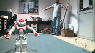 Whole body imitation by a NAO robot