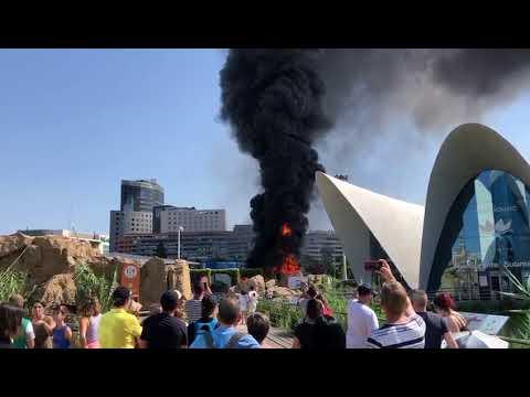 Controlado el incendio declarado en el Oceanogràfic de Valencia