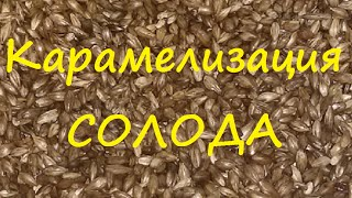 Делаем сами, светлый карамельный солод для пива. Сан Саныч.(http://samogonshikov.ru http://vk.com/samogonshikov Как я сделал карамельный солод описанный в видео на канале