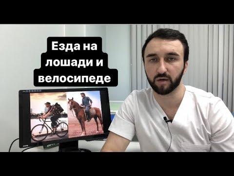 Езда на лошади и велосипеде
