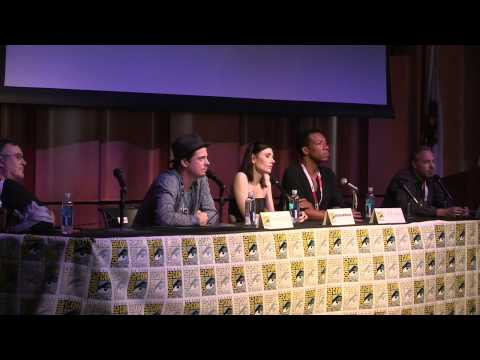 Star Trek Renegades Comic Con Panel