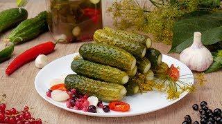 Малосольные огурцы быстрого приготовления - Рецепты от Со Вкусом