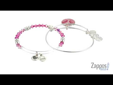 Alex and Ani Art Infusion Set, Butterfly Bracelet SKU: 9107299