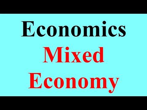 10 Mixed Economy