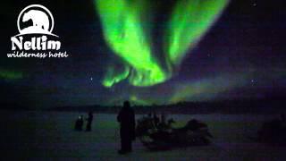 Live video from Wilderness hotel Nellim aurora camp