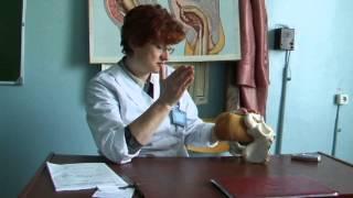 Акушерство и гинекология (Учебное видео) №3