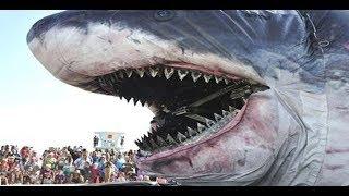 Топ 10 самых больших животных в мире /// огромны животные
