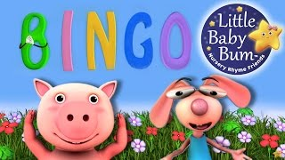 BINGO | Nursery Rhyme | HD version from LittleBabyBum
