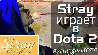 Stray играет в Дота 2 #1