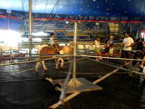 Rajiv riding a donkey at the circus