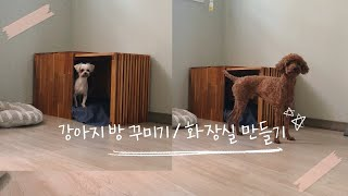 [강아지 방 애착 프로젝트] 푸들&말티즈 강아지…