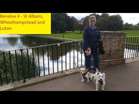St Albans, Wheathamstead, Harpenden And Luton - Benelux Trip 4