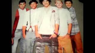 DIY One Direction Cardboard Cutout!