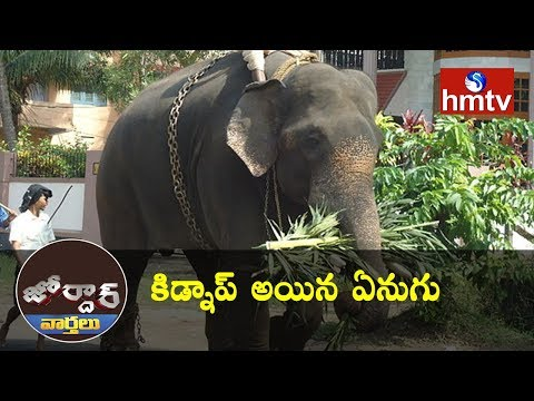 Elephant Kidnap In Kerala | Jordar News | Telugu News | hmtv News