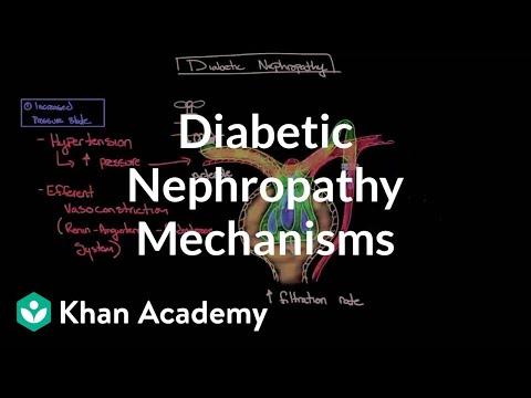 Diabetic nephropathy - Mechanisms | Endocrine system diseases | NCLEX-RN | Khan Academy
