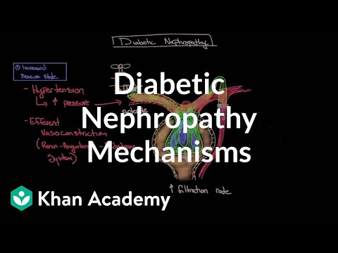 diabetic-nephropathy---mechanisms-|-endocrine-system-diseases-|-nclex-rn-|-khan-academy