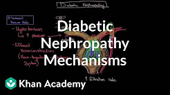 Diabetic nephropathy - Mechanisms | Endocrine system diseases | NCLEX-RN | Khan Academy
