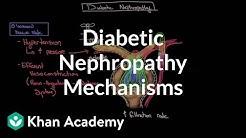 hqdefault - Pathology Diabetic Kidney Disease