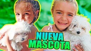 NUEVA MASCOTA 🐶 EL MEJOR REGALO SORPRESA!!