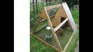 Download Building Plans For Chicken Coops | Cheap & Easy Detailed Building Plans For Chicken Coops