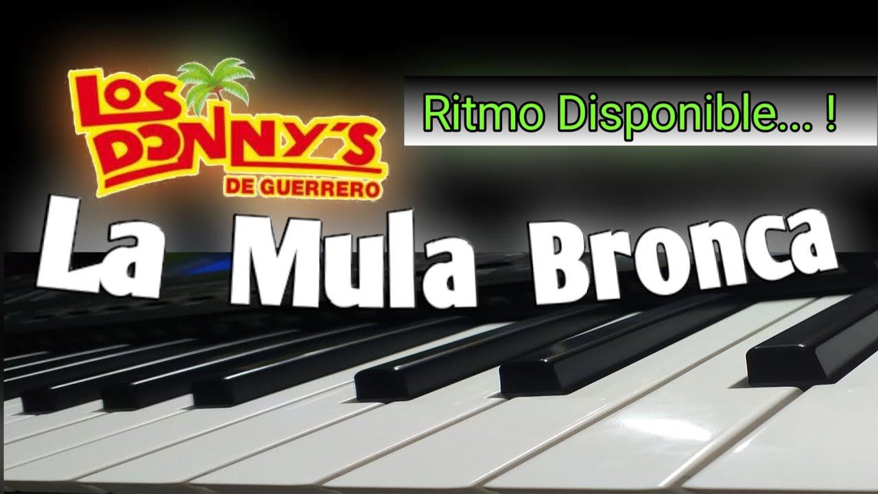 La Mula Bronca - Los Donnys de Guerrero - ¡Tutorial bien Explicado! (RITMO DISPONIBLE)