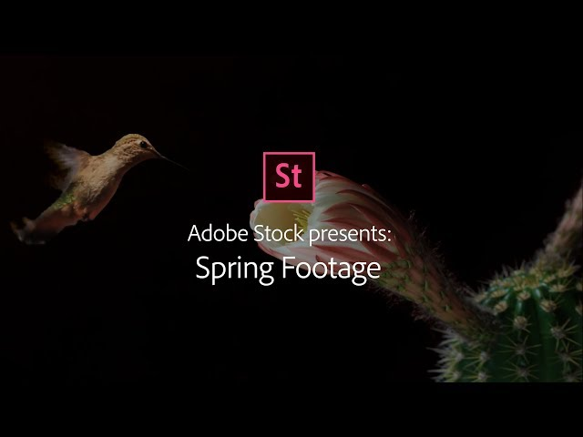 Spring Season - Stock Footage from Adobe Stock | Adobe Creative Cloud