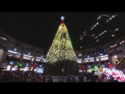 Families Kick Off Holiday Season With Lighting Of Faneuil Hall Christmas Tree