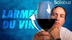 Comment le vin peut-il grimper sur le verre ? #larmesDuVin