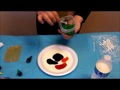 Sonoran Science Academy  Magic Colored Milk