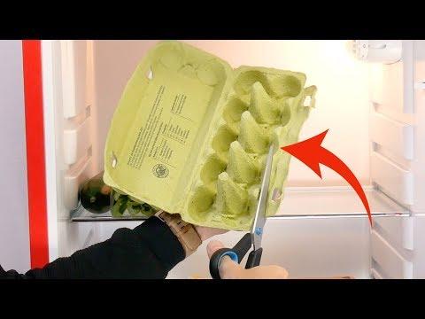 Вот почему нельзя выбрасывать картонную упаковку для яиц. Это просто гениально!