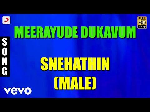 Meerayude Dukavum - Snehathin Male Malayalam Song | Prithviraj, Ambili Devi, Renuka Menon