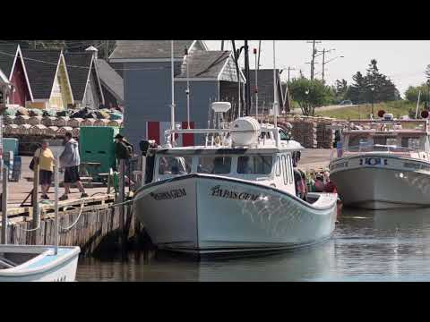 Moving to Canada: Town of North Rustico, Prince Edward Island
