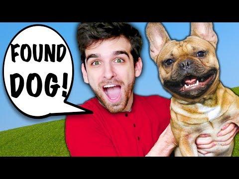 I RESCUE DOG