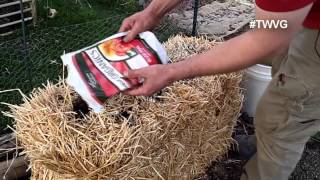 Prepping For A Straw Bale Garden