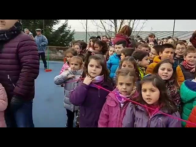 Uns 800 escolares conmemoran en Vilalba o Día das Persoas con Discapacidade