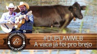 #DUPLAMMLB - A vaca já foi pro brejo