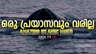 ഒരു പ്രയാസവും വരില്ല- Amazing Islamic video Malayalam -ZainTVHD