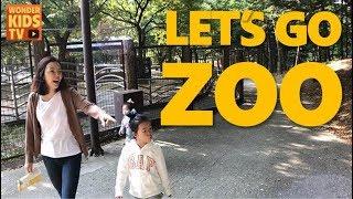 원더키즈TV 서울대공원 동물원에 가다! LET'S GO ZOO