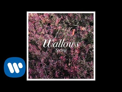 Wallows - Ground (Official Audio)